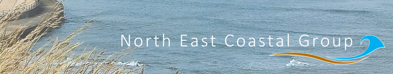 North East Coastal Group